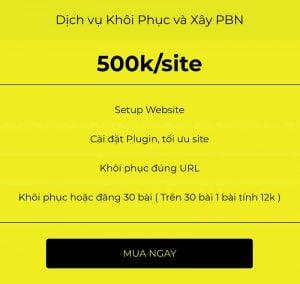 Dich vu Khoi Phuc va Xay dung PBN